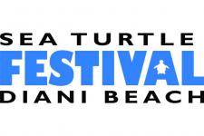 2. SEA TURTLE FESTIVAL
